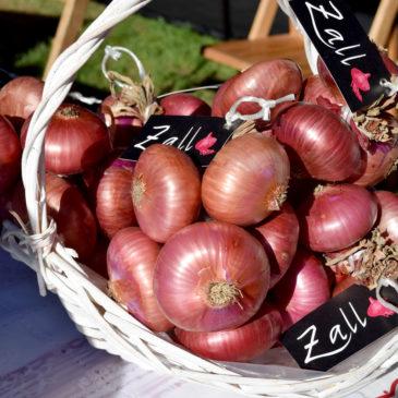 Cebolla morada de Zalla - Eneko sukaldari